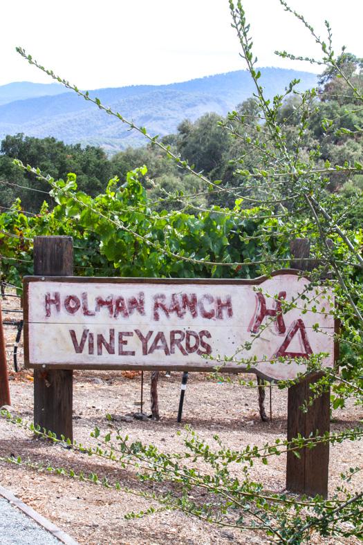 Hollman Ranch Vineyards Sign FoodFash