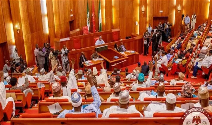 Senate passes N895.842billion supplementary budget into law