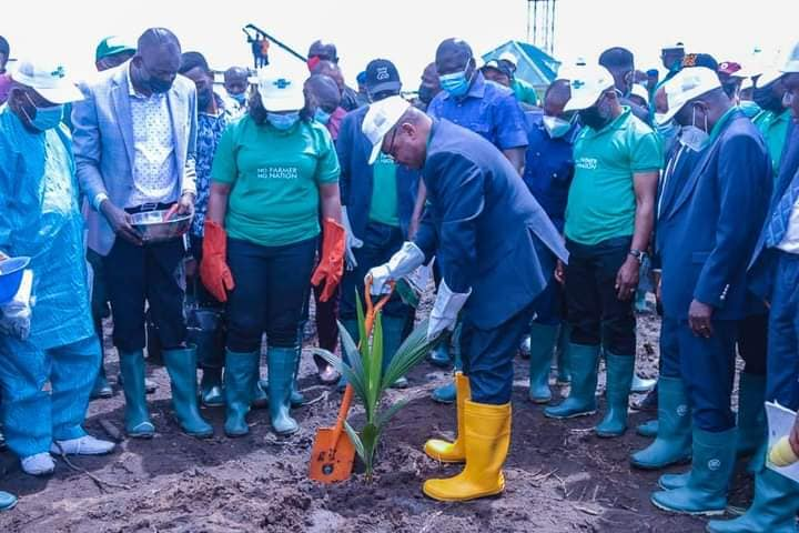 Gov. Emmanuel seeks federal government's financial support for commercial cultivation of coconuts