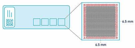 Spatial Transcriptomics