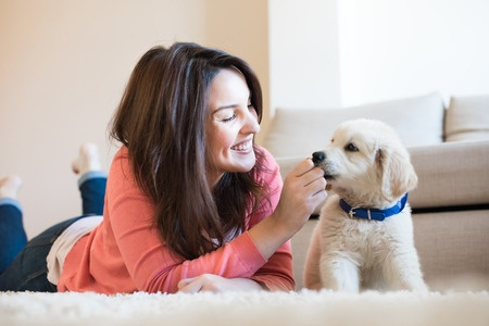 3 Common Mistakes Of Well Meaning Pup Parents