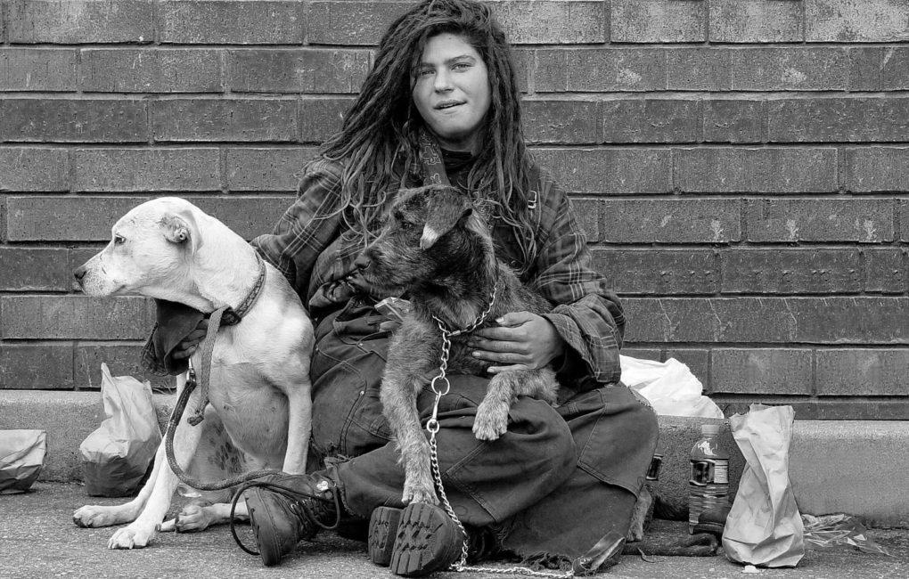 homeless impact