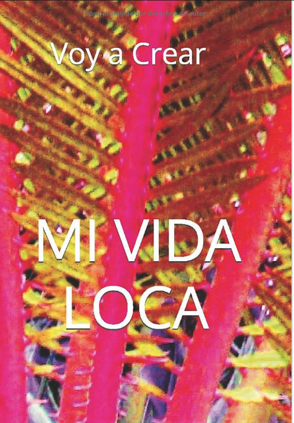 Mi vida loca book