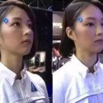 日本机器人妻子