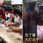 各地主妇和批发商都为抢购猪肉而大打出手。