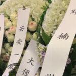 刘少奇之子刘源、薄熙来长子李望知、邓小平之女邓楠