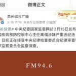 中国疾控中心主任高福被抓