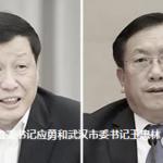 新任湖北省委书记应勇和武汉市委书记王忠林