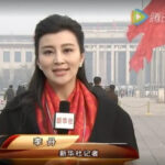 新华社电视台记者李丹