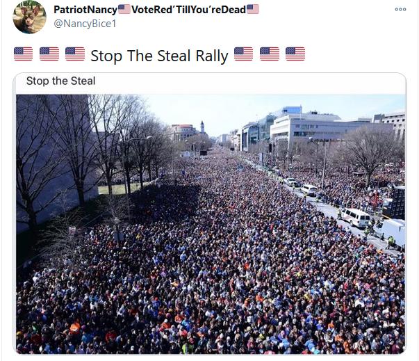 支持川普 - stop the steal rally