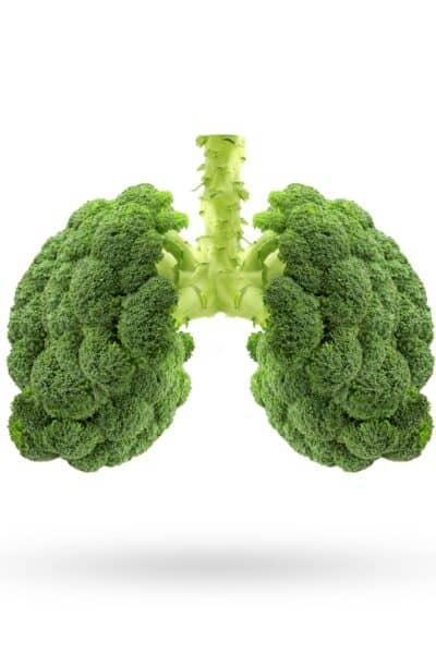 broccoli in the shape of lungs