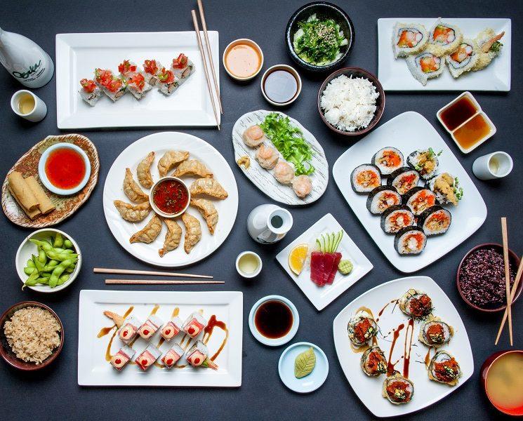 Osaka meal including sushi pot stickers