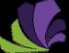 Iris Consulting Solutions