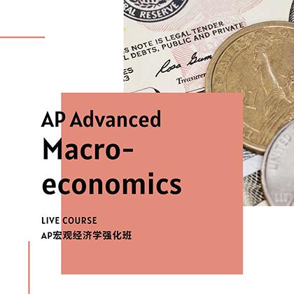 AP Advanced Micro-economics Course - SSAT/SAT Training in Toronto