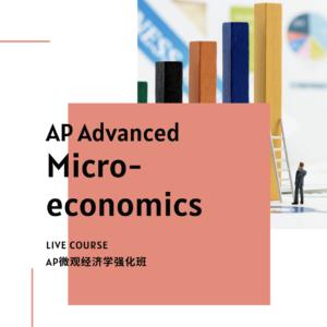 AP Advanced Micro-economic Course - SSAT/SAT Training in Toronto