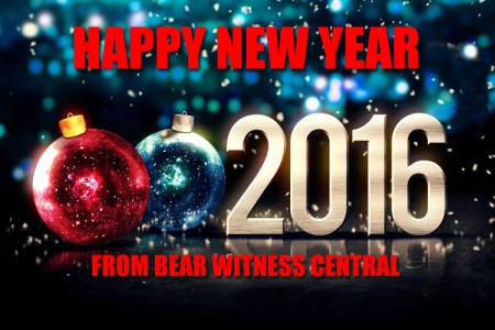 2016-new-year-FROM-BWC