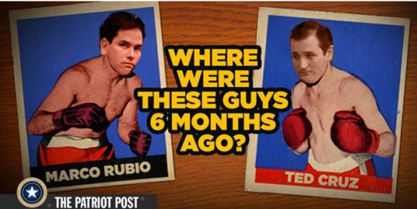 MARCO TED
