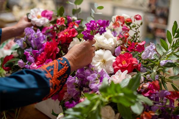 SK_greece flower images 2 600x400 pixels
