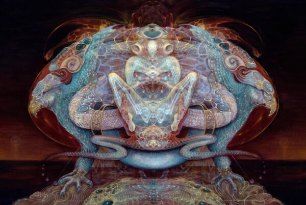 Amazonian Perspectives on Invisible Entities