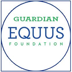 guardian-blank