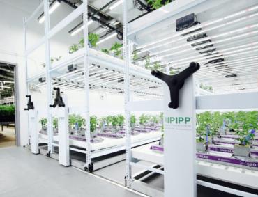 vertical-farming-racks