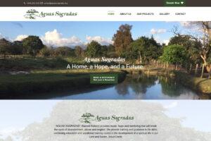 Maxeemize- Charity Website Design