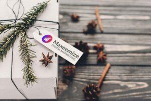 Maxeemize - Orange County Digital Marketing - Yearender