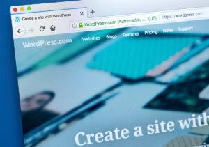 Maxeemize - Orange County Digital Marketing - Custom Website vs WordPress Website