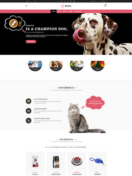 Maxeemize - Orange County Online Marketing - Peto Veterinary Website Design
