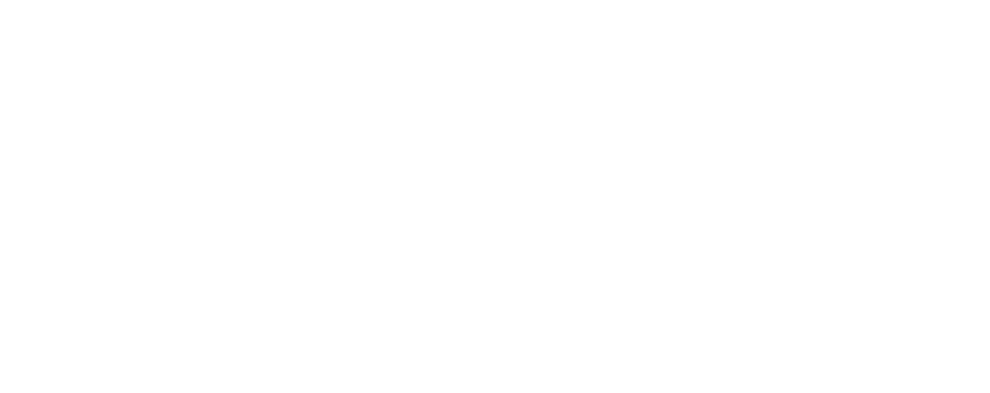 The Meaningful Company