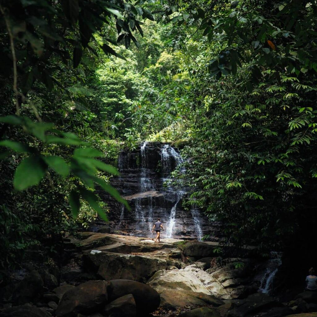 Discovered a beautiful waterfall in the jungle