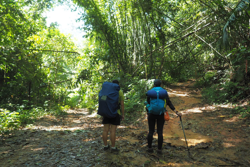 2 people standing in front of a split trail in the jungle
