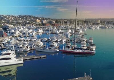 Lifeline Batteries – San Diego Marine Exchange – Case Study
