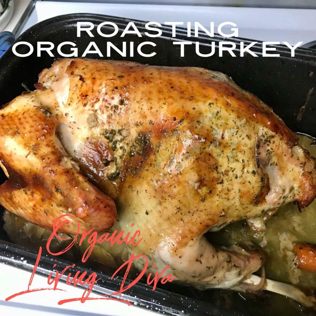 roasting succulent organic turkey