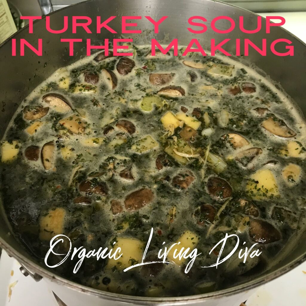 making turkey soup with broth and leftovers