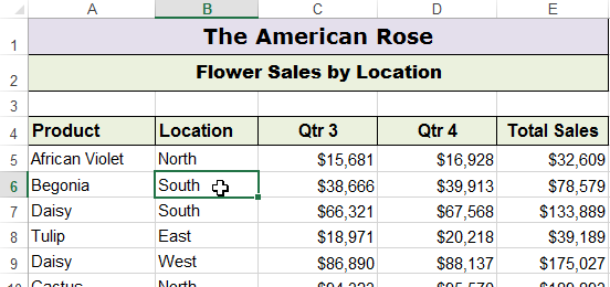 Removing Duplicates in Excel - data