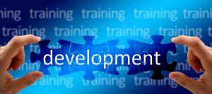developing a training program