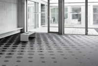 forces_at_work_carpet_004