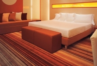 hotel_carpet_029