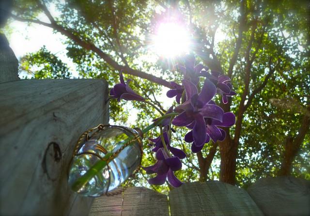 Chandelier Light Bulb Vase
