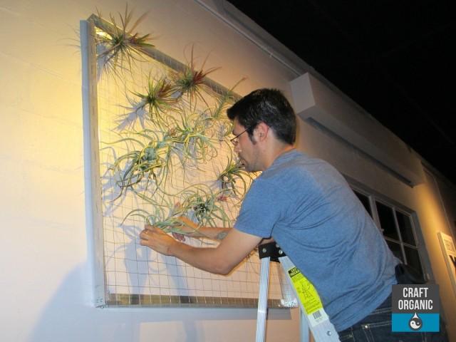 Vertical Garden 001
