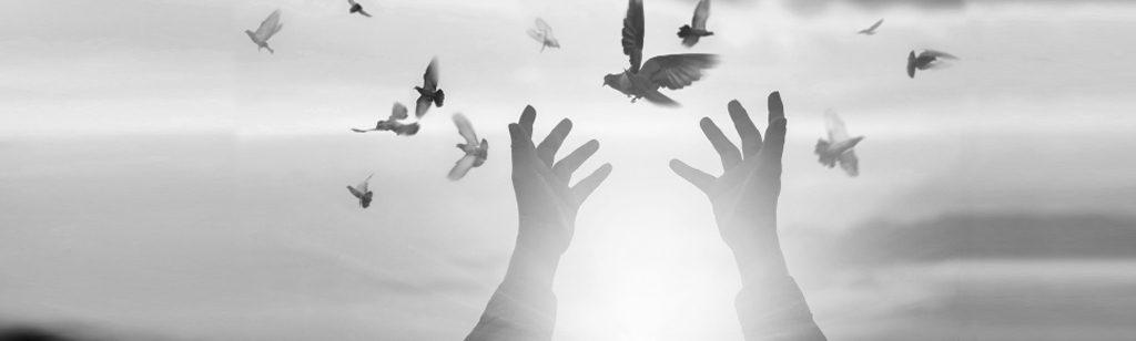 ``Con destino al Cielo``