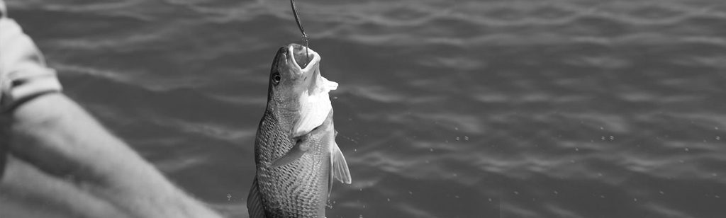 ``¿Una moneda en la boca de un pez?``