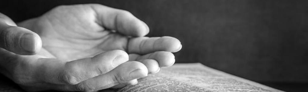 ``La recompensa de la fidelidad``
