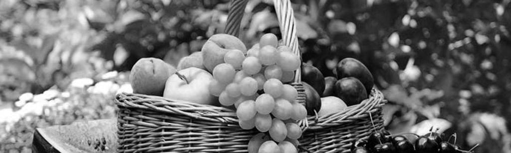 ``El fruto de la santidad``