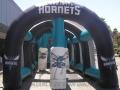Charlotte Hornets Basketball Dribble