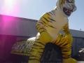 Inflatable Raton Tigers Custom Standing Mascot Tunnel