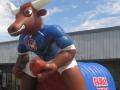 Graham Custom Inflatable Steers Entryway