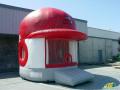 Great Lake Loons Inflatable Helmet Bounce