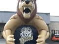 montgomery lion 3